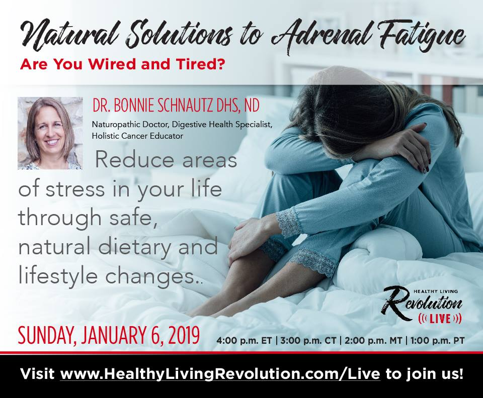 Natural Solutions to Adrenal Fatigue — Dr. Bonnie Schnautz DHS, ND