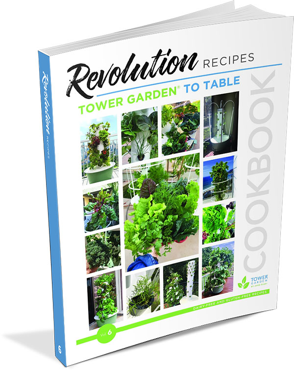 Revolution Recipes Cookbook Vol 6
